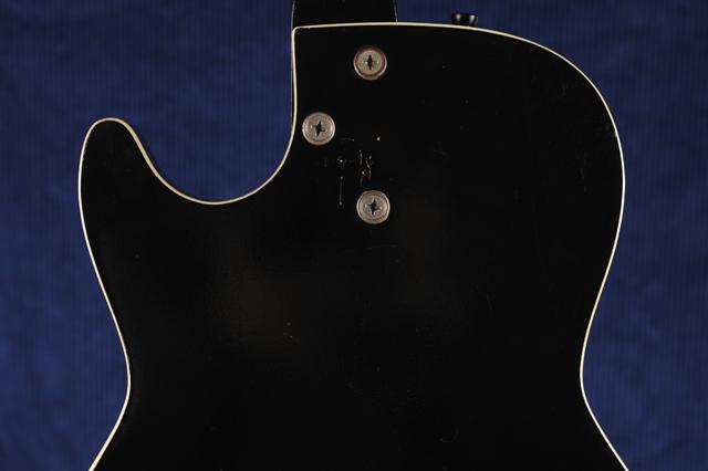 Silvertone_body-back-top